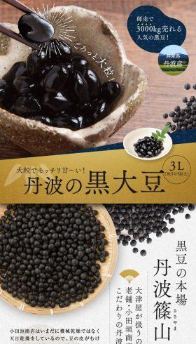 丹波の黒大豆