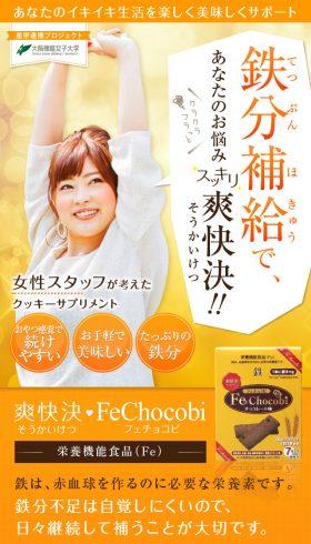 鉄分補給でスッキリ爽快決 Fe Chocobi