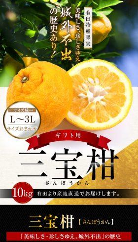 有田特産果実「三宝柑」
